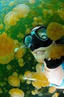 Kimi Werner entre medusas