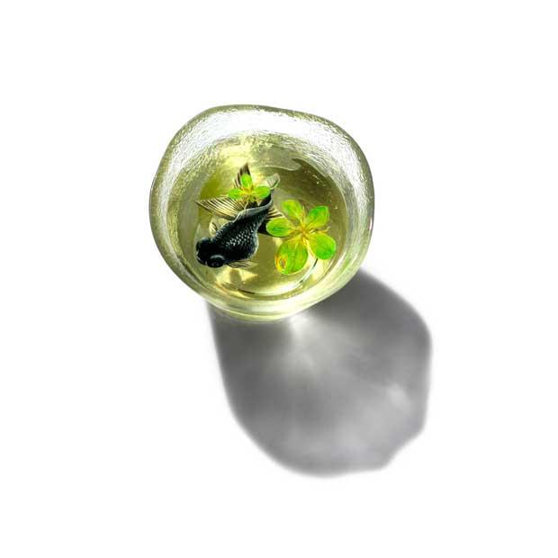 pez negro pintado en acrílico sensación 3D