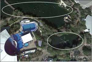zonas de mosquitos junto a SeaWorld