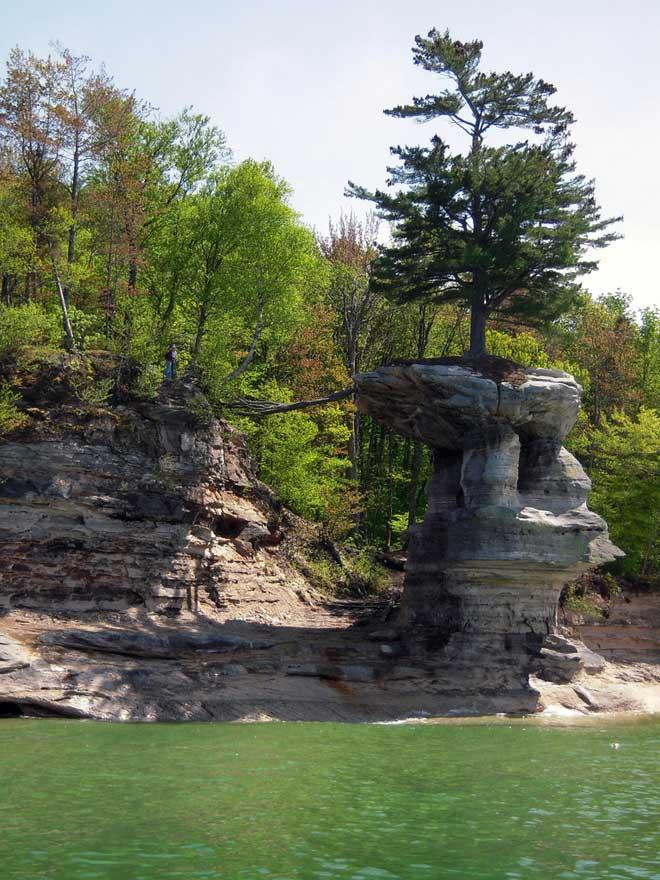 árbol de Chapel Rock, lago Michigan