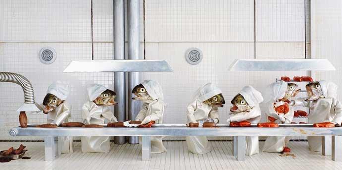 cadena de producción de fábrica hecha con peces
