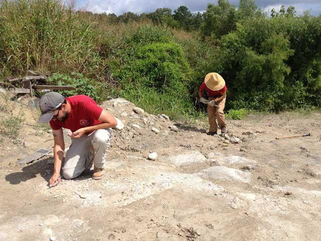 Los Drs. Dana Ehret y Takehito durante una excavación