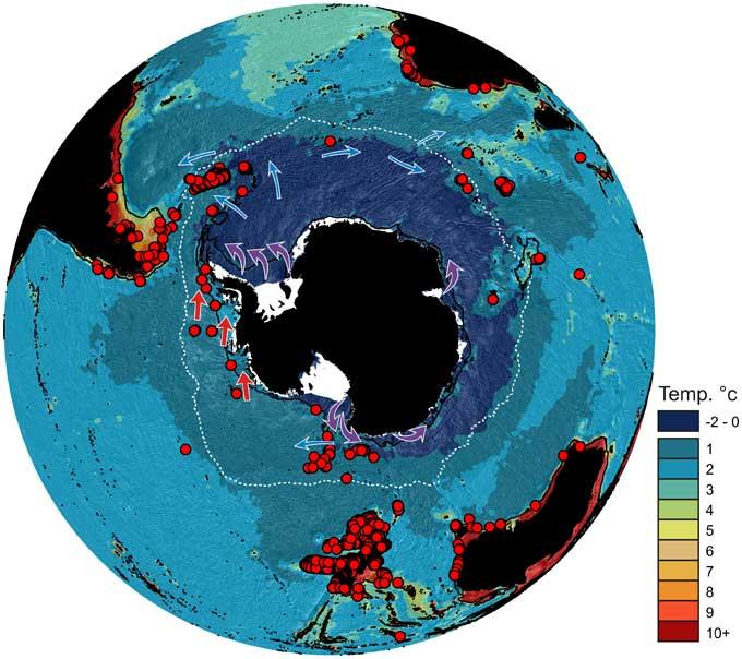 distribución del cangrejo rey (Lithodidae) en la Antártida