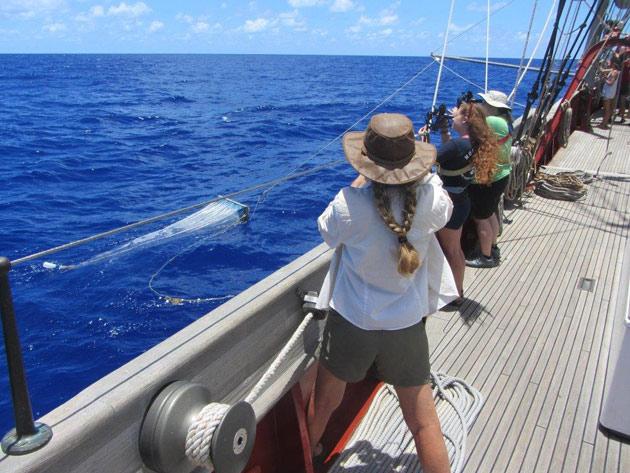 investigación sobre el plástico en el océano