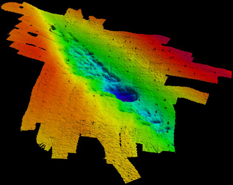 mapa de sonar de bosque submarino en el Golfo de México