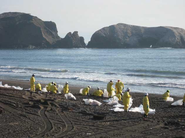 limpieza de derrame de petróleo en una playa