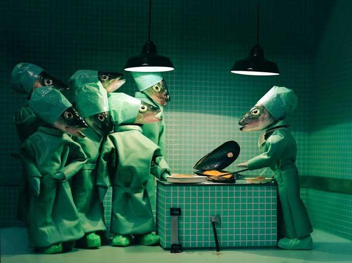 quirofano y cirujanos hechos con peces