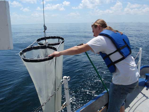 red de plancton
