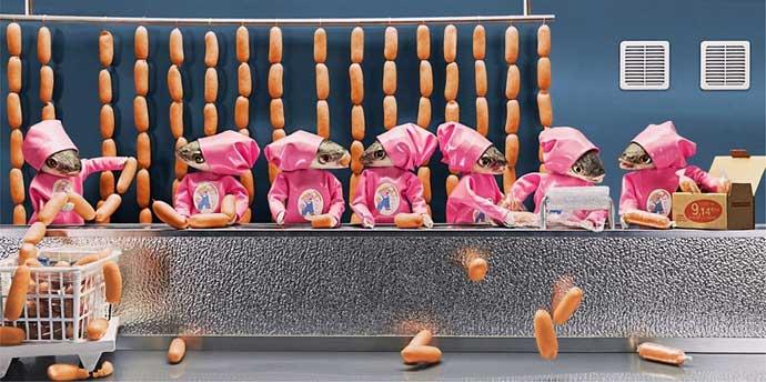 salchicheróa hecha con peces
