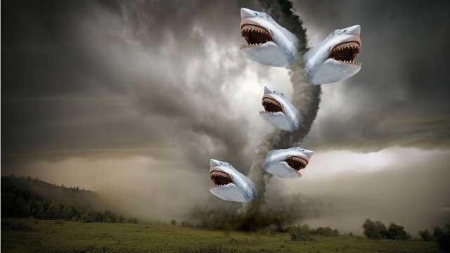 Sharknado attack