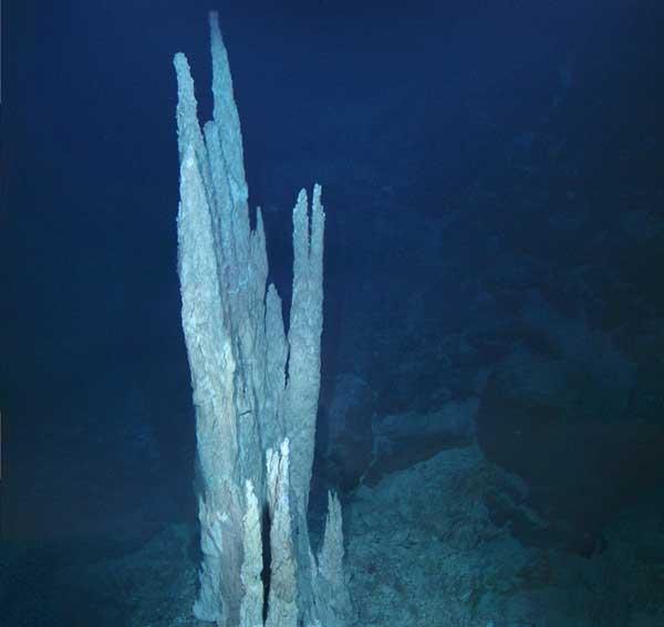 torres de piedra caliza en la 'Ciudad Perdida' del Atlántico