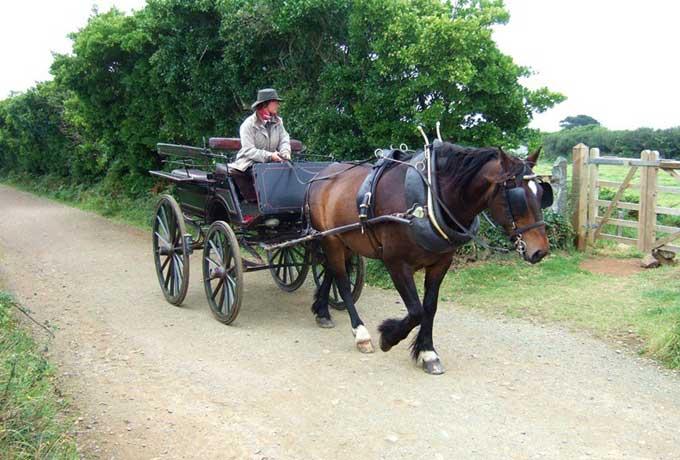carro de caballos en la Isla de Sark