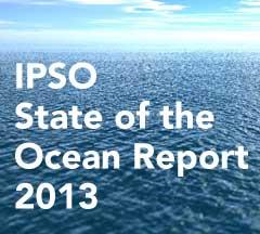 informe IPSO 2013