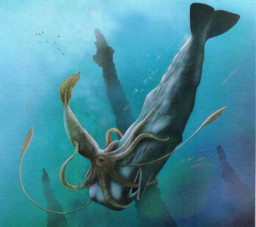 kraken lucha con un cachalote