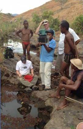cíclidos Mangarahara hallados en charcas de Madagascar