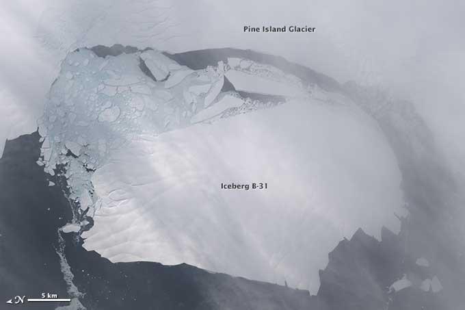 iceberg B-31 en Pine Island Bay