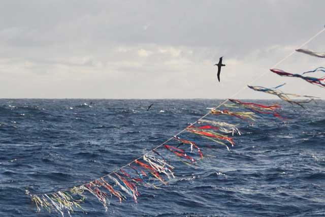espanta pájaros en una línea de pesca