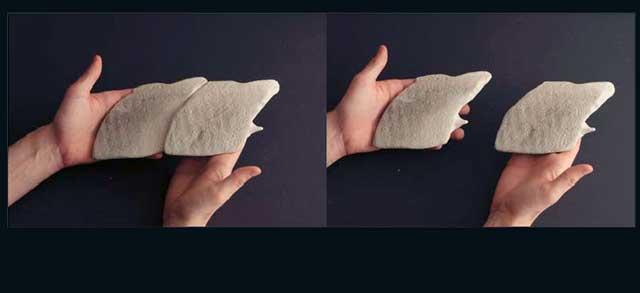 prototipos 3D de escamas de Polypterus senegalus