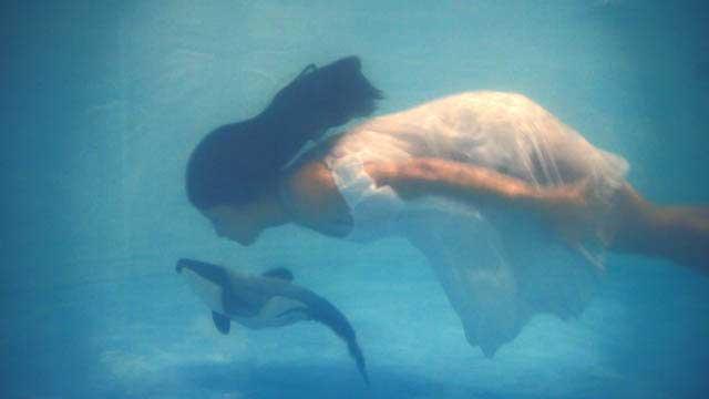 Quiero parir un delfín