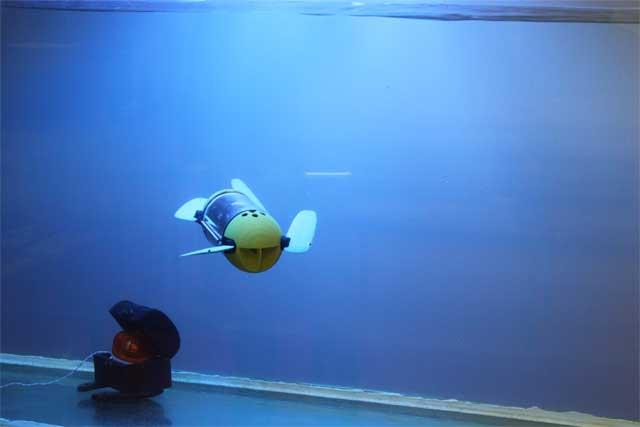 robot tortuga U-CAT