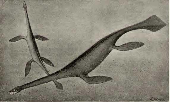 Seeleyosaurus de Dames