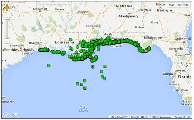 varamientos de delfines en el Golfo de México