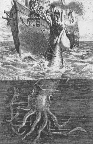 calamar gigante, leyenda