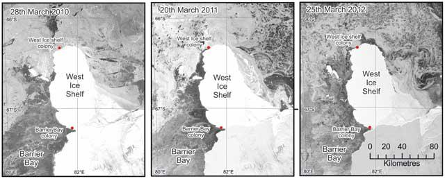 condiciones del hielo marino vistas desde el Evisat