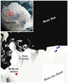 Localización del hábitat de la Edwardsiella andrillae en el Mar de Ross