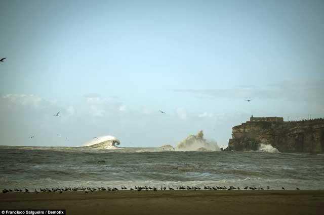 olas gigantes en Nazaré portugal, febrero de 2014
