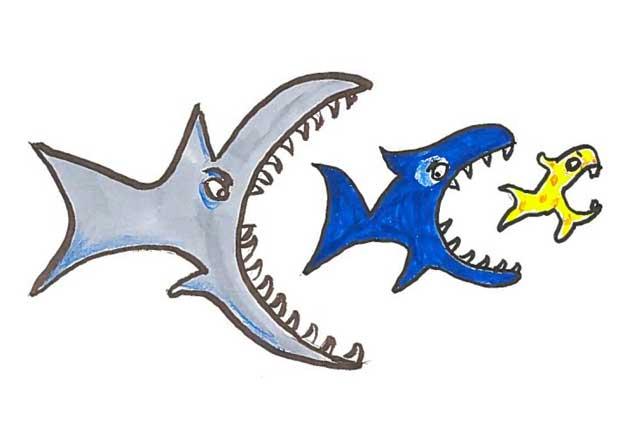 el pez grande se come al chico