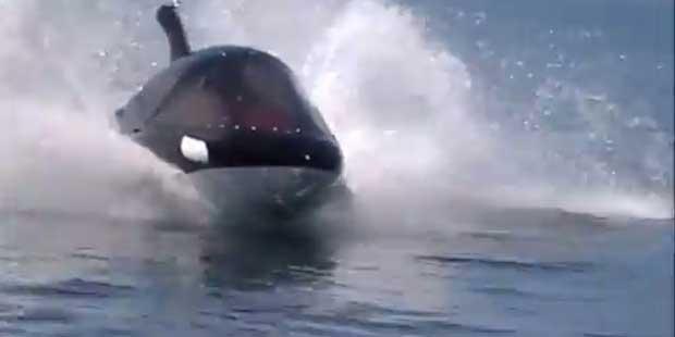Seabreacher modelo orca