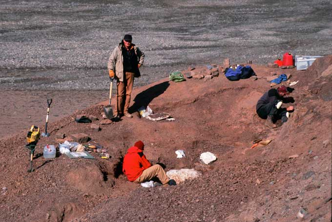 sitio donde se hayó el fósil del Tiktaalik roseae