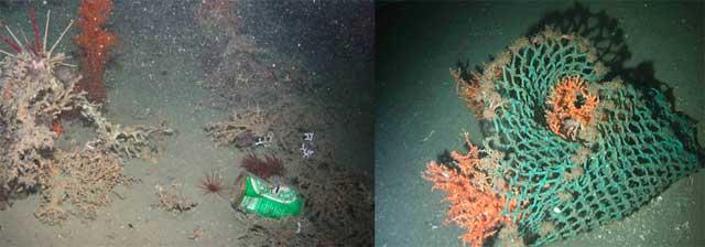 basura en fondo del océano