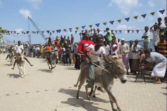 carrera de burros en la isla de Lamu