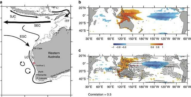 Propiedades Regionales de la superficie del océano en el Indo-Pacífico