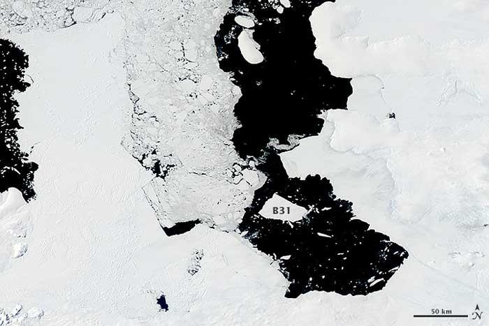 iceberg B31 diciembre 2013