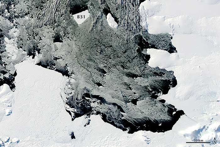 iceberg B31 marzo de 2014