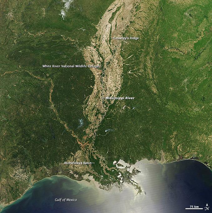 llanura aluvial del Mississippi