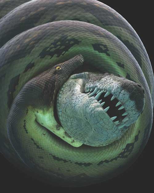 lucha de una titanoboa y un cocodrilo prehistórico
