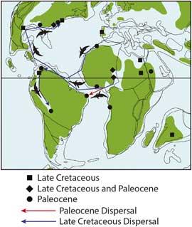 migración Dyrosaurus desde África