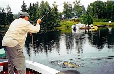 pesca del muskie en los Grandes Lagos