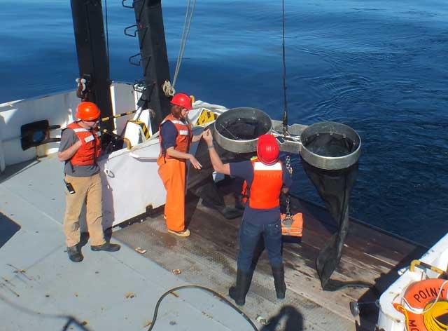 redes bongo para recoger pterópodos