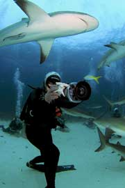 Madison Stewart, la chica tiburón