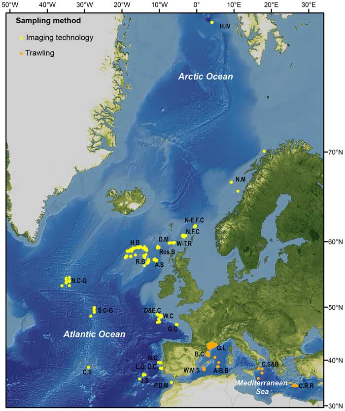 zonas del estudio con más basura submarina