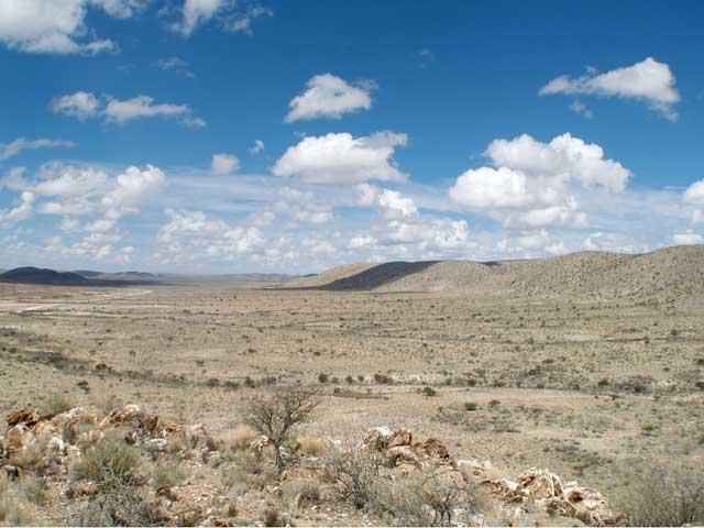 arrecife de Cloudina descubierto en Namibia