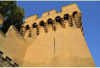 castillo de Avignon