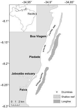 líneas para captura de tiburón en Recife, Brasil