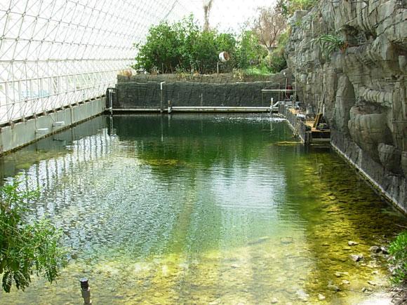 océano (biome) en Biosfera-2