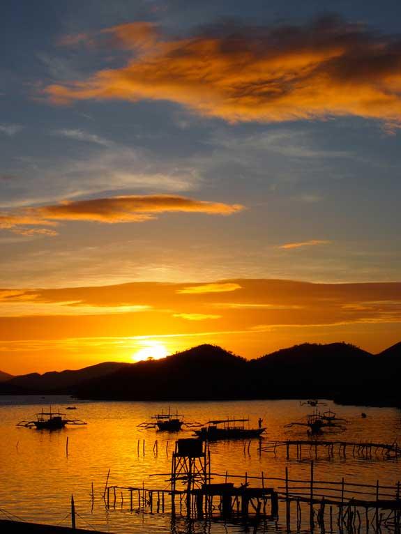 Palawan, Protegida pero en peligro